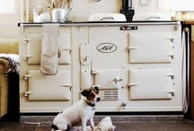 Kitchen / by Jeanette Bruce