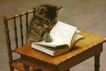 That Cat! / by Jeanette Bruce