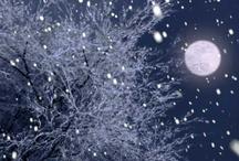 Winter / by Jeanette Bruce