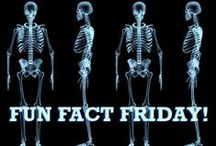 Fun Fact Friday! / Every Friday we post a new Fun Fact about science topics!