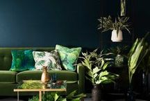 TROPICAL / Tropical inspired interior decor and design.