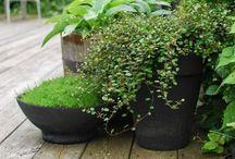 GREEN / Environmentally conscious