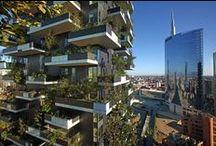 Actualidad Ambiental / Una selección de nuestras noticias de medio ambiente más leídas por nuestros lectores.