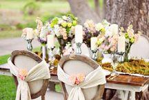 Wedding / by Jacqui Streicher