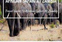 African Safari At Zambia / African Safari at Zambia Travel Tips.