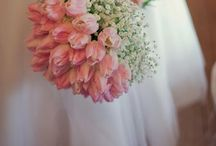 Your special day / Wedding ideas and info just for you!
