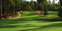 Golf in Pinehurst / Choose from a variety of great golf courses