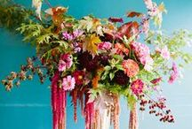 Flowers / Floral inspiration