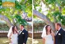 Cambria Wedding  / Robin's Restaurant ~ Ceremony & Reception Venue