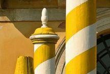 ⊱ Yellow ⊰