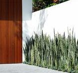 Modern Contemporary Gardens / Modern Contemporary Garden Inspirational Ideas.