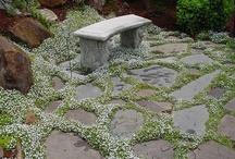 Garden Ideas / by Gretchen Wilder