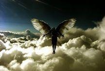 angels / by Ann Hoff