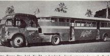 Buses: Articulated Buses / Articulated Buses.
