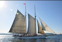 Tall Ships / My favorite tall ships from the Fyddeye Guide to America's Maritime History