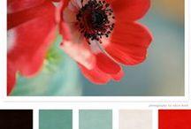 Palette / Palette di colori per abbinamenti, idee o solo per vedere la bellezza delle tinte che ci circondano.