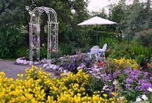Our own garden - Oma puutarha / http://myusualdailylife.blogspot.com