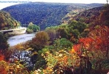 """Pennsylvania Group Board ✈  / Pennsylvaniais GROUP BOARD ☛ Hi, If You Want To Join A Board, Please Mention In The (ADD A COMMENT) Section of Any """"ADD ME"""" Pin on The First Board (ADD ME BOARD) Which Board(s) (Up to 25 Boards) You Want To Join, I Will Do The Rest. Pin What Is Appropriate For That Board, NO DOLLAR $IGNS, NO SPAM. Please Pin Your Best Photos. No Photos of Pets or People. Thank You"""