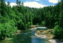 Rivers Group Board / Beautiful Rivers, Streams & Lake Photography ~ PINTEREST GROUP BOARD ☛ If You Want To Join A Board, Please Mention In The ADD A COMMENT Section of Any Pin Below Which Boards You Want To Join, For Now I am limiting the # of boards each person can join to 25) Please Pin Your Best Photos of BEAUTIFUL RIVERS & LAKES , No Photos of Pets or People. Thank You / by ( Pin The World )