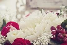 Photo: wedding / wedding photography