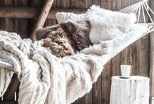 WINTER / Take a cozy seat, breath deeply and feel the winter with a cup of tea