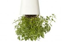 Boskke / Turn gardening on its head with a Boskke Sky Planter. It's unique reservoir feeds water gradually to the plant's roots with no excess water draining away. So, now you can grow your herbs above your kitchen counter - right where you really need them.