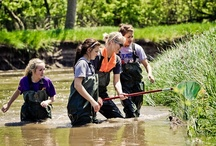 NElovesPS: Student Scientists in Action / At Newman Grove Public Schools, science teachers are using the great outdoors as their classroom, giving students the opportunity to experience the scientific process in its most natural form.