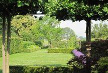 gArden / sPecial / gardening is the work of a lifetime: you never finisch.