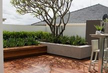 Cl@u || Rooftop garden / Ideas for Balcony's and Rooftops