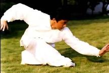 Xingyi / Martial art
