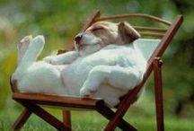 Νυστάζω!