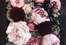 Garden, flowers