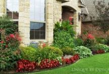 Curb Appeal/Landscapes / by Margeaux B.