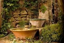 Enchanted gardens / Colors, relaxation, beauty