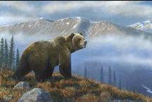 Desmond McCaffrey -  Western Wildlife Artist / Award winning wildlife artist