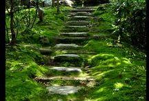Chemins et sentiers