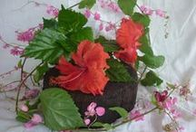 criativartesanato.com.br / artesanato com reciclagem