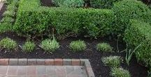 Rob's Gardening and Outdoor Maintenance / Ideas for Gardens