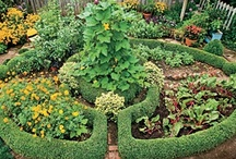 ⊱ Poʂɧ Ꭾσȶaɠҽrʂ ⊰ /   ⊱ Lovely potagers and vegetable gardens ⊰  See also 'Potager planning' and 'Walled gardens' / by ✿⊱ ᎷᎯᏒᎥᏖᏕᎯ'Ꮥ ᎶᎯᏒᎠᎬN ⊰✿