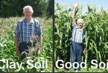 ✣ Souɴᴅ Soɪʟ ✣ / Soil preparing methods, different soils, tips and hints.  Fertilizers, manure, compost...See also 'Horticulture hints' / by ✿⊱ ᎷᎯᏒᎥᏖᏕᎯ'Ꮥ ᎶᎯᏒᎠᎬN ⊰✿