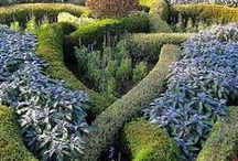 大 BritisϦ ɠαrɗeηs 大 / Gardens in British isles: England, Wales, Scotland and Ireland. See also 'Cozy cottage garden', 'Distinct gardens' and 'Landscape gardens' / by ✿⊱ ᎷᎯᏒᎥᏖᏕᎯ'Ꮥ ᎶᎯᏒᎠᎬN ⊰✿