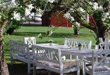 大 Nordic gardens 大 / Gardens in Finland, Sweden, Norway and Denmark / by ✿⊱ ᎷᎯᏒᎥᏖᏕᎯ'Ꮥ ᎶᎯᏒᎠᎬN ⊰✿