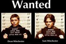Winchester / by Erin Rosenberg