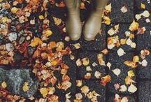 ☂☁☔ Autumn ☂☁☔