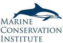 Ocean / Marine Conservation