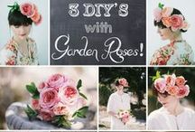DIY's and How-To's - Wedding Flowers / A round-up of fun and informative DIY projects, tutorials, and how-to's for weddings and wedding flowers!