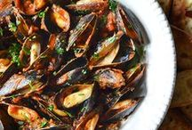 Under the Sea / Seafood Recipes