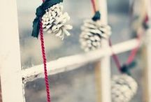 Holiday / by Coe & Company