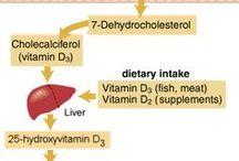 Advanced Nutrition Topics