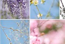 vår-spring / spring